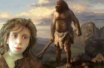 Фото история неандертальцев