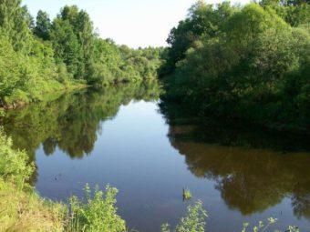 Керженец река фото