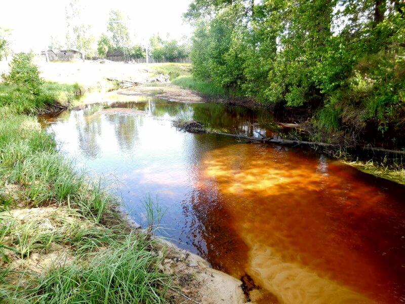 Фото 3 - река Вишня в поселке Рустай