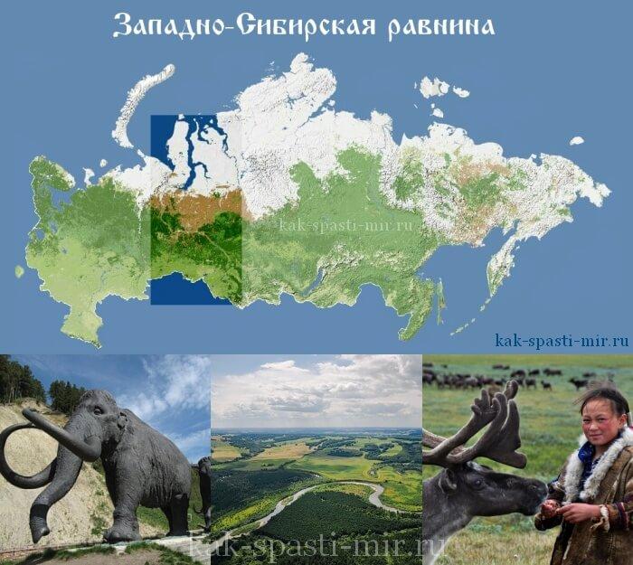 западно-сибирская равнина фото
