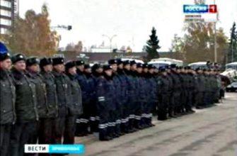 Фото нижегородская полиция строевой смотр