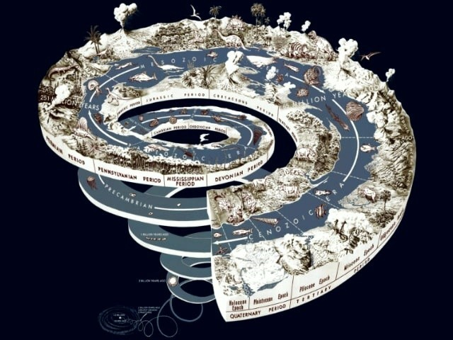 Хронология эволюции жизни на Земле