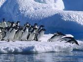 Озеро Восток в Антарктиде — 2012 год
