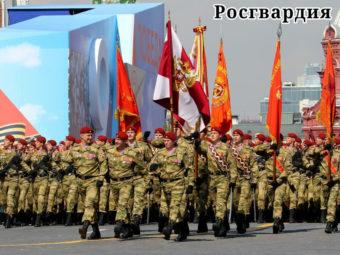 Фото Военнослужащие Отдельной дивизии оперативного назначения им. Ф.Э. Дзержинского на Параде Победы в Москве 9 мая 2019
